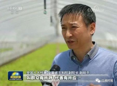 """趙皖平:明星代表走上《新聞聯播》""""履職一年間""""首秀"""