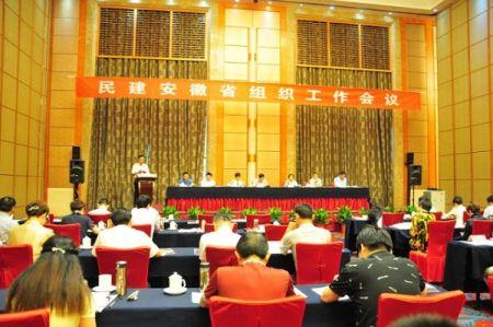 民建安徽省组织工作会议召开