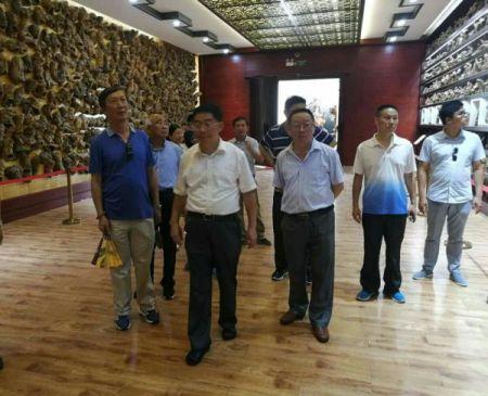 """民建中央宣传部部长张皎一行到安庆调研""""不忘合作初心、继续携手前进""""主题教育活动"""
