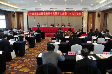民建安徽省委召开九届三次全委扩大会议